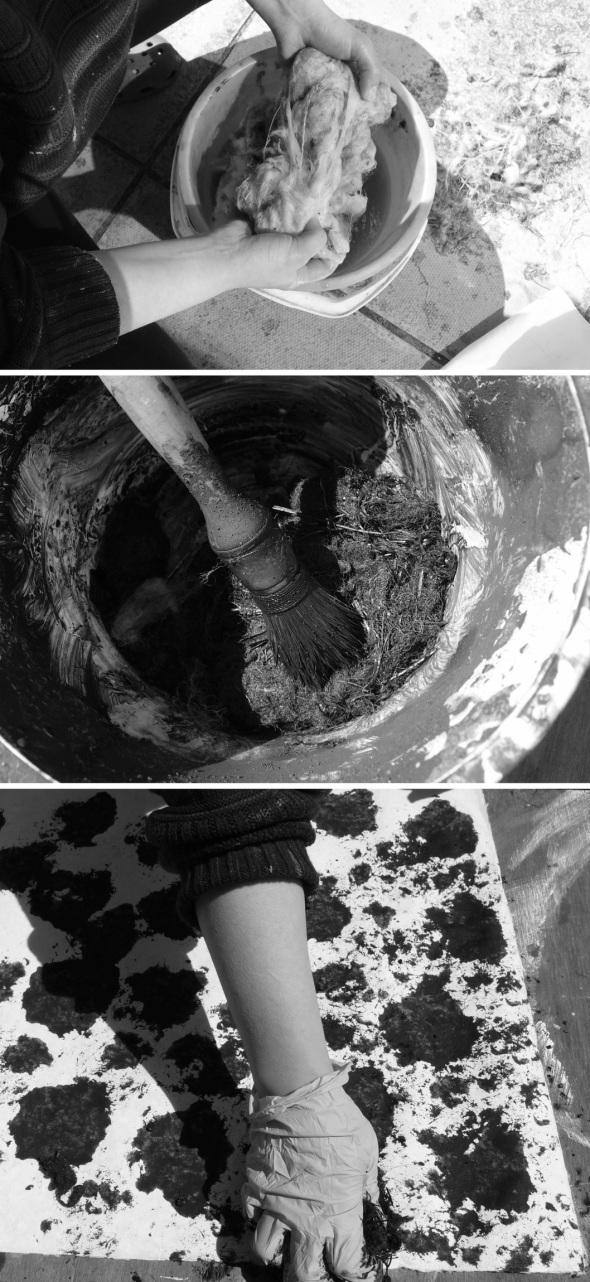 black sheep process (p ward:f owen 2013)