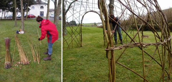 willow dome, broomhayes NAS (p ward & f owen, 2013)