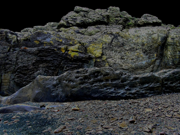 downend rocks, north devon (p ward 2004)