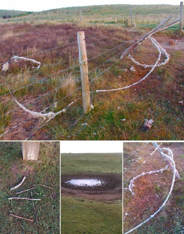 without? fence, wool, waterhole, sticks - northam (p ward 2013)