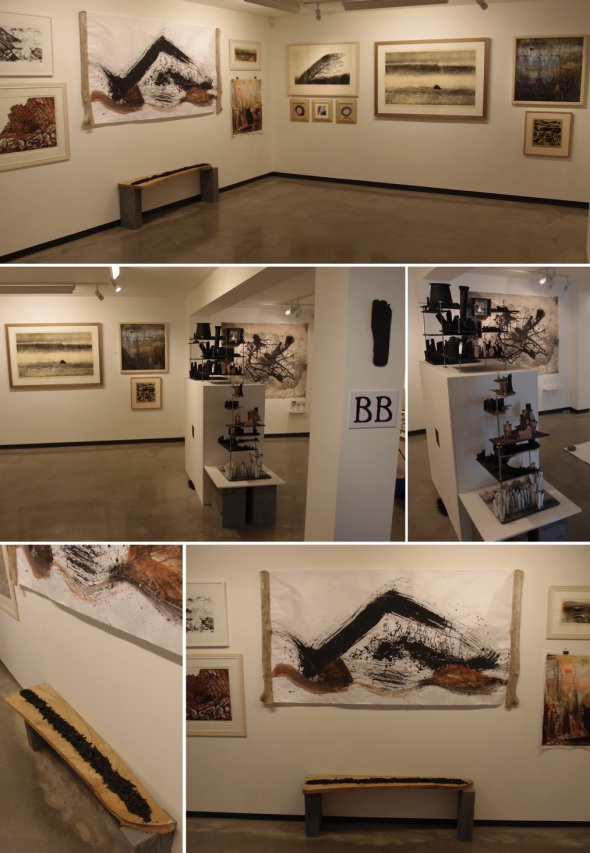 BIDEFORD BLACK - 5 artists; gallery views (p ward 2013)