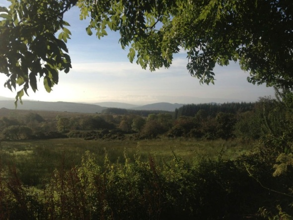 paradise, county clare, Ireland (m a ward 2013)