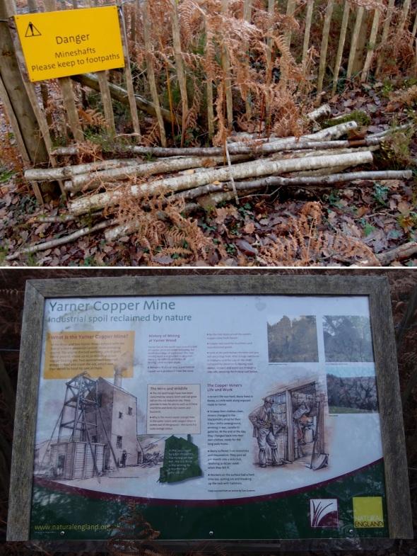 an old bundle of sticks; interpretative display - yarner wood, east dartmoor (p ward 2013)