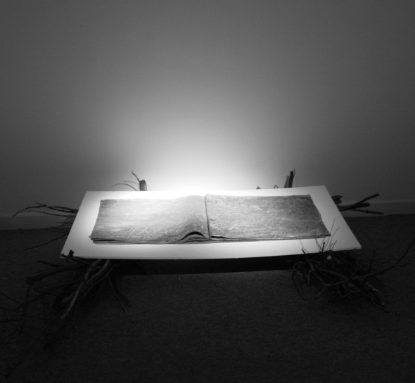 earth book 2, CMR gallery redruth (f owen:p ward; mud, paper and sticks; 2012)