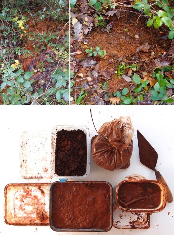 iron salts and soils from yarner wood, east dartmoor (p ward 2013)