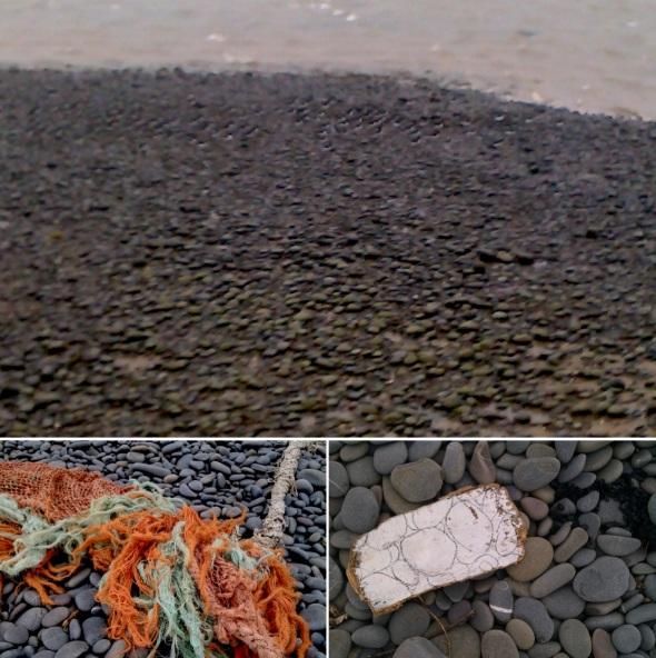 oystercatchers; fishing net monster; charcoal drawing – northam (p ward 2013)
