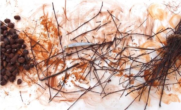 sketch with nuts, lure, pigments and sticks (p ward 2013)