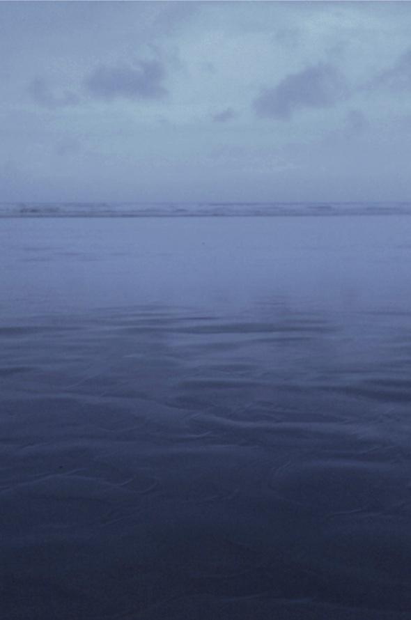 grey morning, westward ho! (p ward 2013)