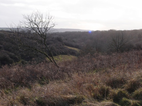 from harting hill, west sussex (p ward 2013)