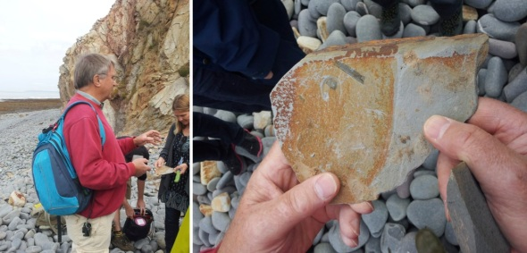 Chris Cornford waxing geological at Greencliff; a fossil tree fern leaf (photos © j bushel 2014)