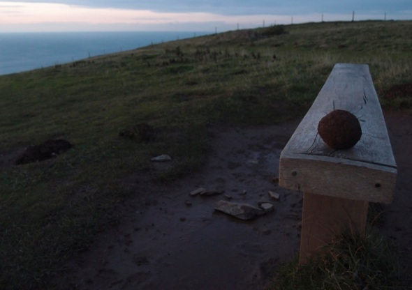 mole hill soil ball 2, baggy point (photograph © francesca owen 2014)