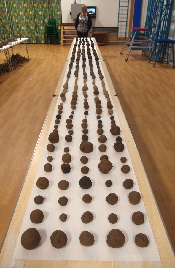 500 soil balls, exhibition table 1 © p ward 2015