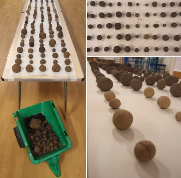 500 soil balls, exhibition table 2 © p ward 2015