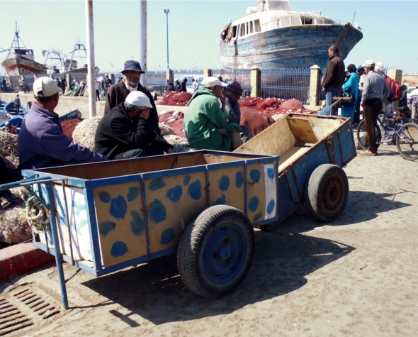 fish cart, essaouira © p ward:f owen 2015