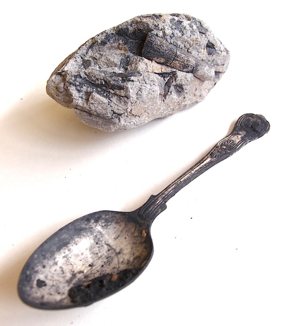 fossil tree fern stem and silver spoon used for digging bideford black, greencliff © p ward 2015