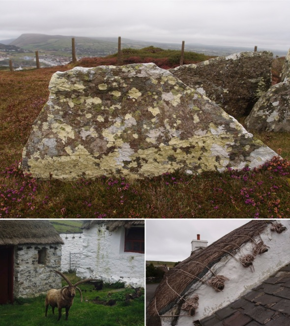 Mull Tomb Circle; Lochtan sheep; Manx thatch, Cregneash © p ward and f owen 2015