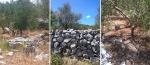 sticks and stones; dugi otok, croatia © p ward2017