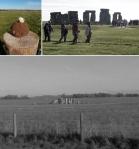 daisy soil ball; procession; Stonehenge, Wiltshire © p ward2017