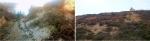 Leswidden China Clay Pits, nr St Just, and Spoil heaps at Tywarnhayle Mine, Porthtowan, Cornwall © p ward2018