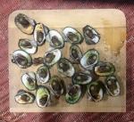 Barbecued clams from Burrill Lake, Ulladulla,NSW © p ward2018