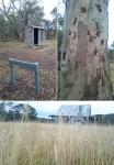 Cooleman Homestead, Namadji National Park, NSW© p ward2018