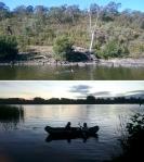Playing in the water (Murrumbidgee River, Black Mountain Peninsula), ACT © p ward2018